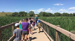 The Outdoor Discovery Park In Denver That's Perfect For A Family Day Trip