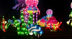 You Don't Want To Miss This Gorgeous Lantern Festival In Washington This Year