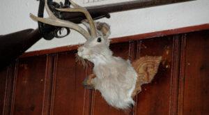 12 Awkward Moments Every Wyomingite Has Endured At Least Once