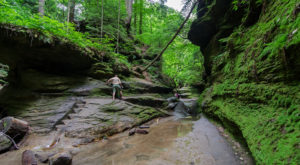 The Hiking Trail Hiding In Indiana That Will Transport You To Another World