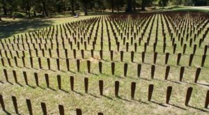 The Terrifying Georgia Mental Asylum With 25,000 Unmarked Graves
