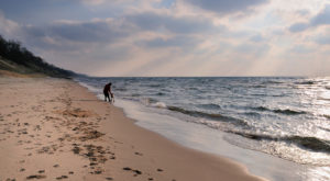 The Top Secret Beach In Michigan That Will Make Your Summer Complete