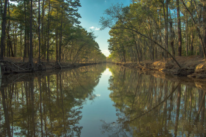 The 10 most underrated state parks in texas for Caddo lake fishing