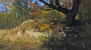 The Little Known Nature Preserve Hiding In Indiana That Is A True Gem