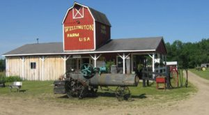 This Farm Park In Michigan Makes For A Perfect Family Day Trip