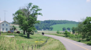 Take These 9 Country Roads Near Cleveland For A Gorgeous Drive