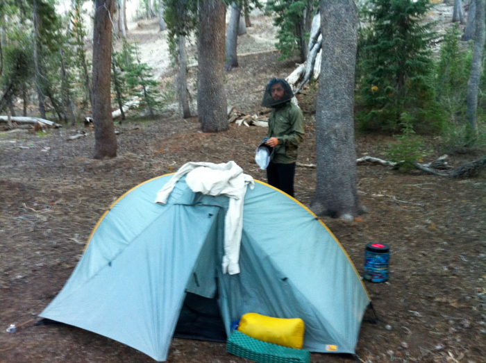 9 campgrounds in south carolina that don 39 t require a for Sumter national forest cabins