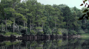 Most People Don't Know This Gorgeous River In Mississippi Has A Haunting Past