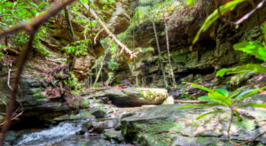 The Hiking Trail Hiding In Tennessee That Will Transport You To Another World