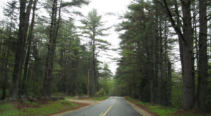 The 7 Best Backroads In Maine For A Long Scenic Drive