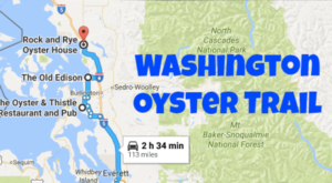 There's Nothing Better Than This Mouthwatering Oyster Trail In Washington