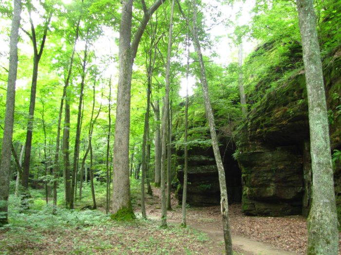 Bork Falls Is A Natural Waterfall Swimming Hole In Illinois