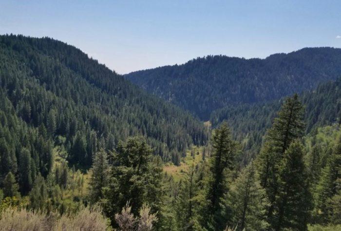 Mesa Falls, Idaho - Natural Wonder Road Trip