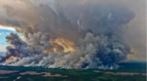 A Massive Wildfire Is Ripping Through Parts Of Georgia And It's Truly Heartbreaking