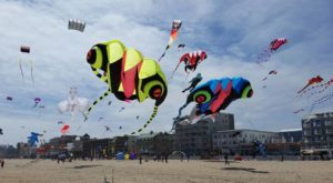 This Incredible Kite Festival In Maryland Is A Must-See