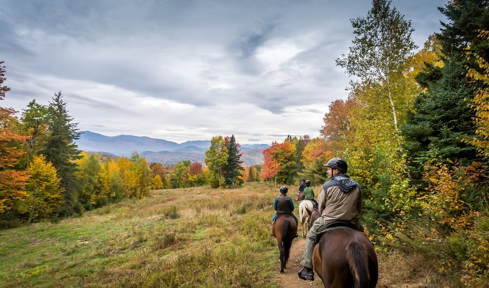 Life In Wyoming >> Horseback Riding At Black Mountain Stables is The Ultimate New Hampshire Adventure
