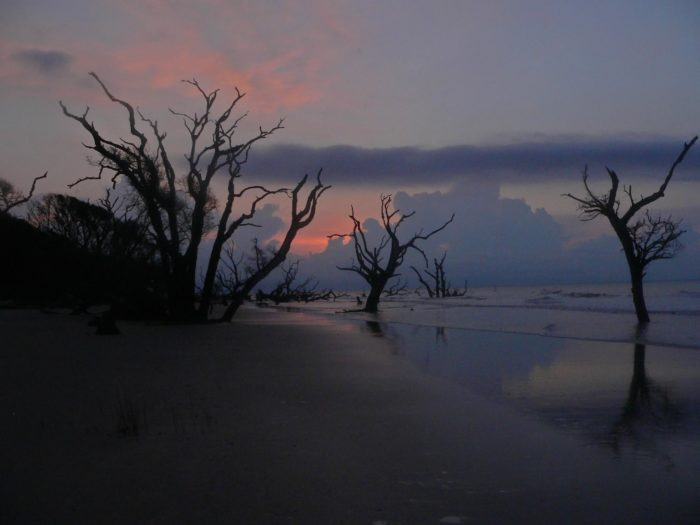 How Many Miles Between >> Boneyard Beach Is The Best Secret Beach In South Carolina