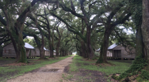 Take A Drive Down One Of Louisiana's Oldest Roads For A Picture Perfect Day
