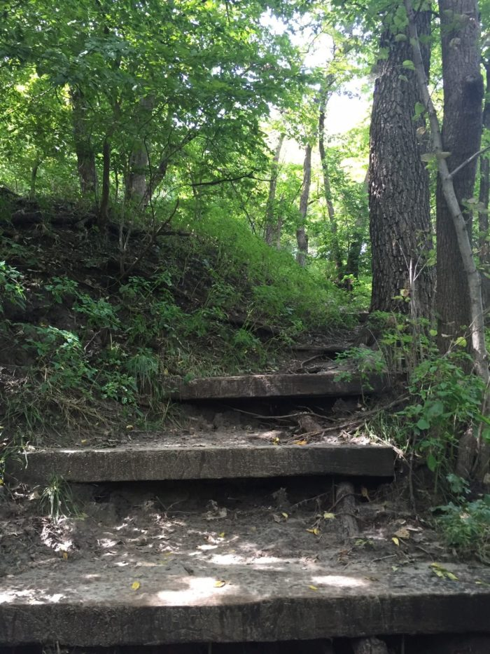 The Hiking Trails At Platte River State Park Are Some Of ...