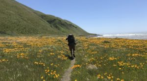 11 Trails In Northern California With An Undeniably Amazing Final Destination