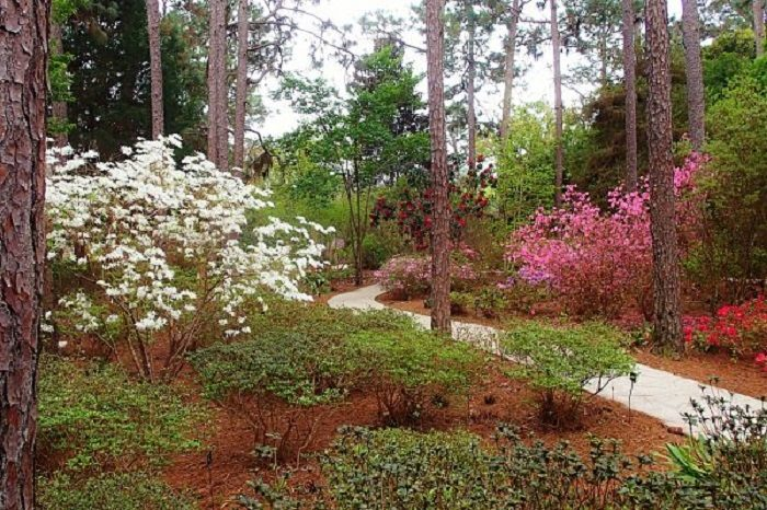 Take The Alabama Garden Trail For An Enchanting Experience