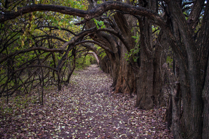7 Amazing Kansas Secrets You Never Knew Existed Only In