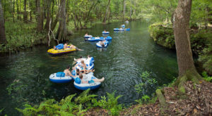 There's Nothing Better Than Maryland's Natural Lazy River On A Summer's Day
