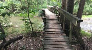 The Hiking Trail Hiding In Virginia That Will Transport You To Another World