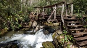 The Hiking Trail Hiding In South Carolina That Will Transport You To Another World