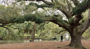 8 Picnic Perfect New Orleans Hikes That Will Make Your Spring Complete