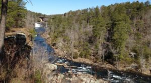 You'll Most Certainly Want To Explore This One-Of-A-Kind Nature Preserve In Alabama Before Summer Ends