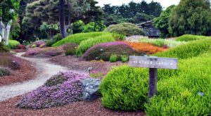 The Secret Garden In Northern California You're Guaranteed To Love