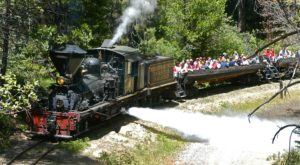 11 Epic Train Rides In Northern California For That Wonderful Scenic Experience You Need