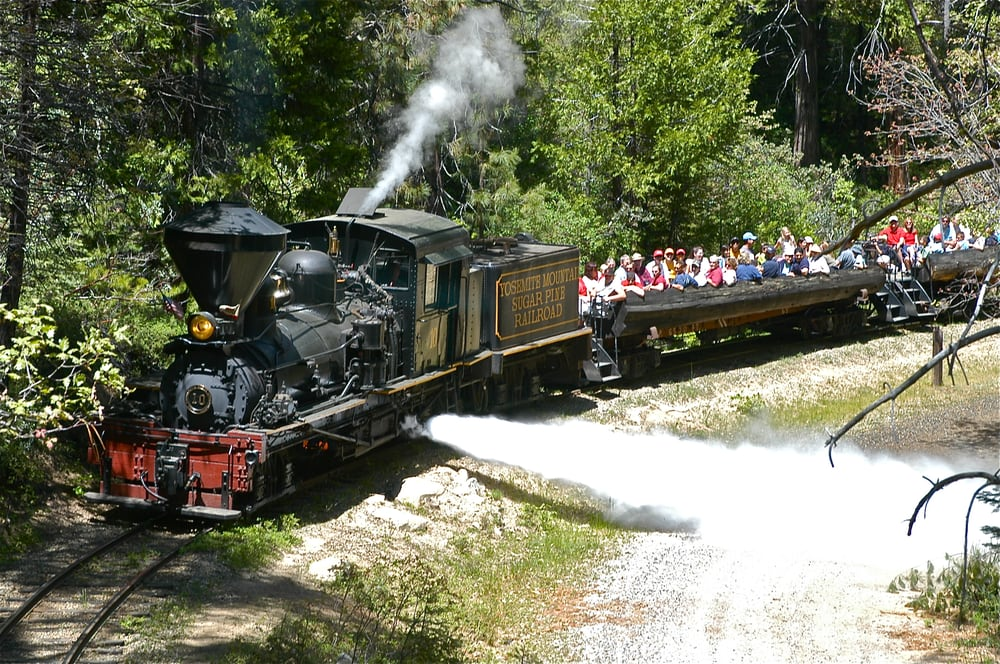 11 Most Scenic Train Rides In Northern California