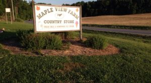 There's An Ice Cream Shop On This Beautiful Farm In North Carolina And You Have To Visit