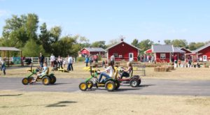 There's No Better Place To Spend A Day Than This Oklahoma Farm