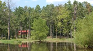 The Hidden Cabin In Arkansas That You'll Never Want To Leave