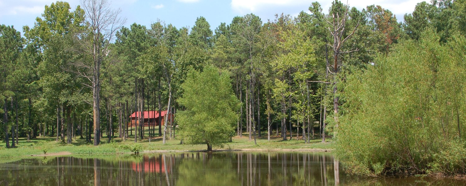 Remember When Cabins The Hidden Cabins In Arkansas That