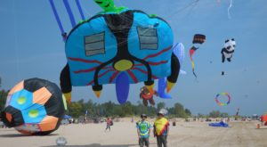 This Incredible Kite Festival In Indiana Is A Must-See