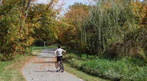 10 Easy And Beautiful Bike Trails In Tennessee Everyone Will Love