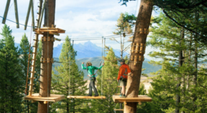 The Epic Canopy Course In Wyoming That Will Bring Out the Adventurer In You