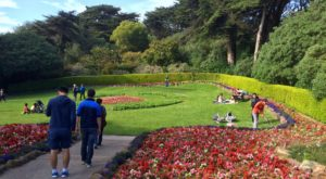 A Trip To San Francisco's Beautiful Tulip Field Will Make Your Spring Complete