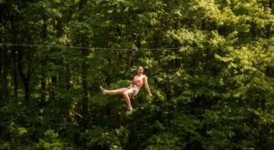 The Epic Zipline In Delaware That Will Take You On An Adventure Of A Lifetime