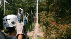 The Epic Zipline In Virginia That Will Take You On An Adventure Of A Lifetime