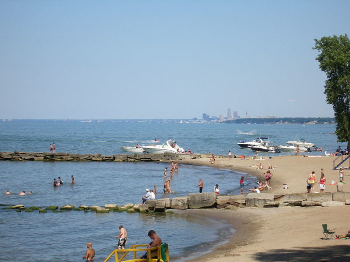 Public Beaches Island Lake