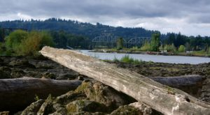 One Of The Oddest Geological Wonders Is Located Right Here In Portland