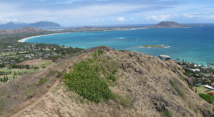 The Easy Trail In Hawaii That Will Take You To The Top Of The World