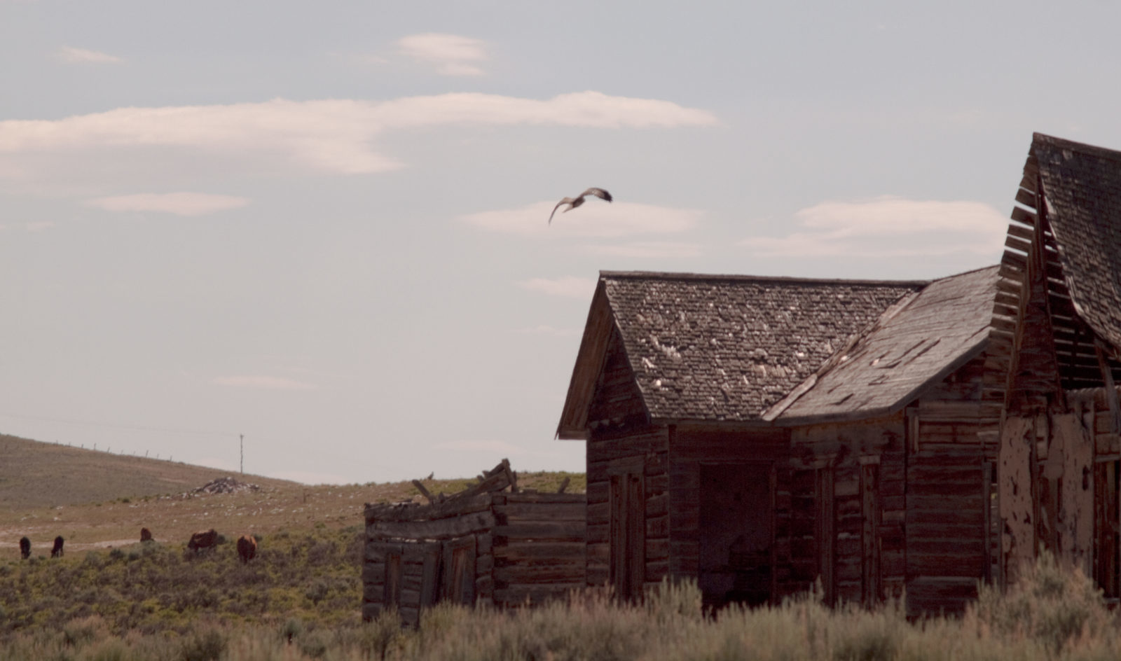 Tell City Indiana >> These 11 Deserted Ghost Towns In Wyoming Tell a Grim Story