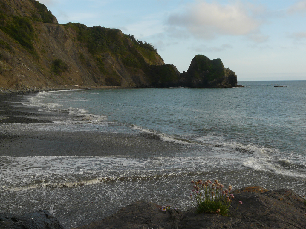 12 of the best beaches in northern california for Best northern california beaches