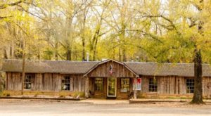 11 Fish Houses In Mississippi That Belong On Your Food Bucket List